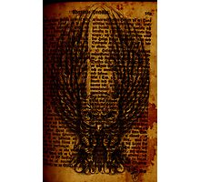 OWL PAGE Photographic Print