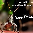 Hopping for A Happy Birthday by michaelasamples