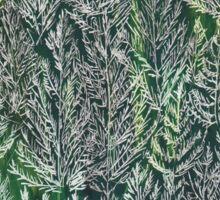 Snow Pines(Light Green) Sticker