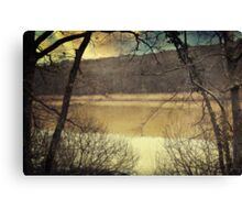 Confession Of The Woods Canvas Print