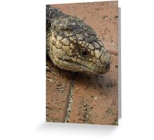Blue Tongue Lizard, up close and personal! Greeting Card
