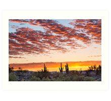 Colorful Sonoran Desert Sunrise Art Print