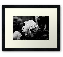 Spring Icon Framed Print