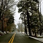 Winter Road by K. Abraham