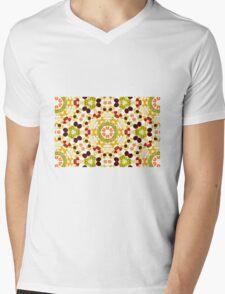 Kaleidoscope Fruit Mens V-Neck T-Shirt
