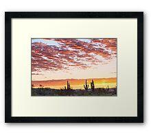 Sonoran Desert Colorful Sunrise Morning Framed Print