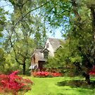 Spring - Suburban House With Azaleas by Susan Savad
