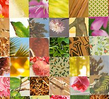 Collagecard: Nature by Sanne Thijs