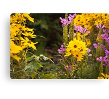 Fall Flowers Canvas Print