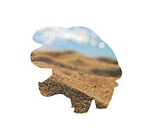 Phanpy used Sand Attack Photographic Print