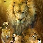 Seasons Of The Lion by Carol  Cavalaris