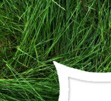 Oddish used Grasswhistle Sticker