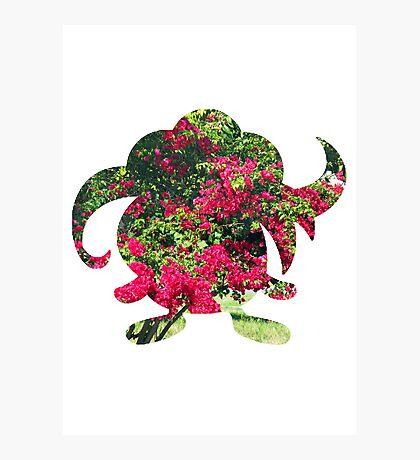 Gloom used Petal Dance Photographic Print