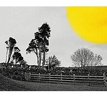 Irish Graveyard With Egg Yolk Photographic Print
