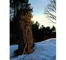 Tree Carving Catching Some Sun Photographic Print