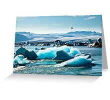 Artic Tern over Jokulsarlon Greeting Card