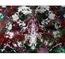 RAINBOW CAMOUFLAGE Photographic Print
