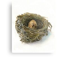 Wren Nest and egg Metal Print