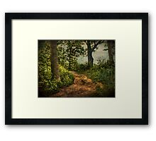 Path by the Lake Framed Print