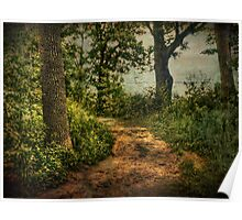 Path by the Lake Poster