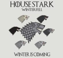 House Stark Variant by superedu