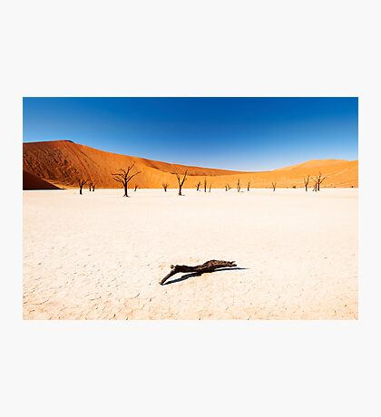 Dead Vlei, Namibia Photographic Print