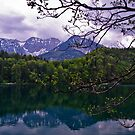 Alatsee -- Western Bavaria by PeachPark