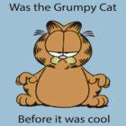 Garfield Grumpy Cat by TOH5