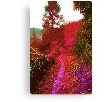 Psychedelic Dreams 2 Canvas Print