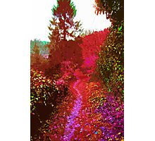 Psychedelic Dreams 2 Photographic Print