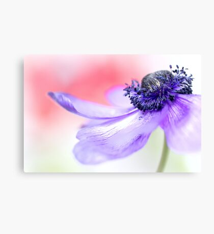 Smooth... Canvas Print
