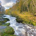 The Strid by Ian Wray