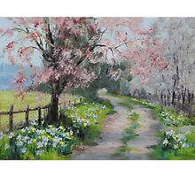 Original Acrylic Landscape Painting - Spring Walk Photographic Print