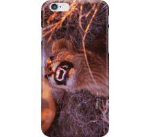 Happy Tau iPhone Case/Skin