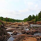 Sturgeon Chutes by Debbie Oppermann