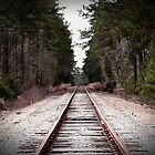 Country Rails by logobot