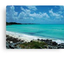 Carribean Blue Canvas Print