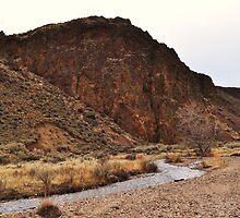 Owyhee Desert - Idaho by CADavis