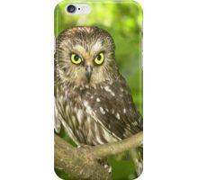 Cute Little Owl iPhone Case/Skin