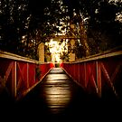 Bridge of Life by codieglann
