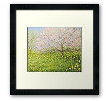 Springtime impression Framed Print