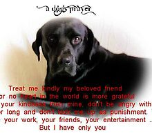 A Dog's Prayer by whitebuffalo