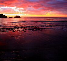tessellated sunrise, eaglehawk neck. tasmania. by tim buckley | bodhiimages