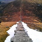 Mourne Wall by DES PALMER