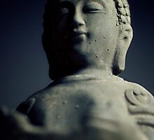 Buddha by Falko Follert