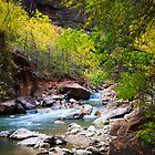 Virgin River in Autumn by Peta Thames