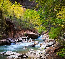 Virgin River in Autumn by Silken Photography