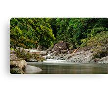 Up The Creek - Mossman Gorge Canvas Print