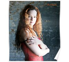 sunlight sheer and shadows, red sheer Poster