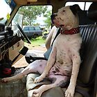 Junkyard Dog by overtherange